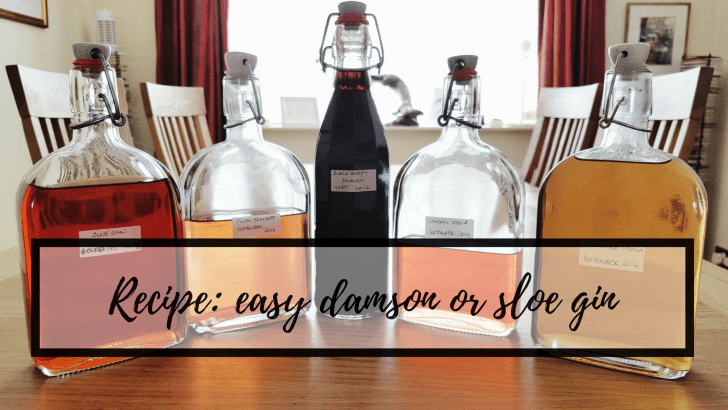 Recipe: easy damson or sloe gin