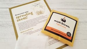 mud-and-bloom-january-review_www.lisasnotebook.com