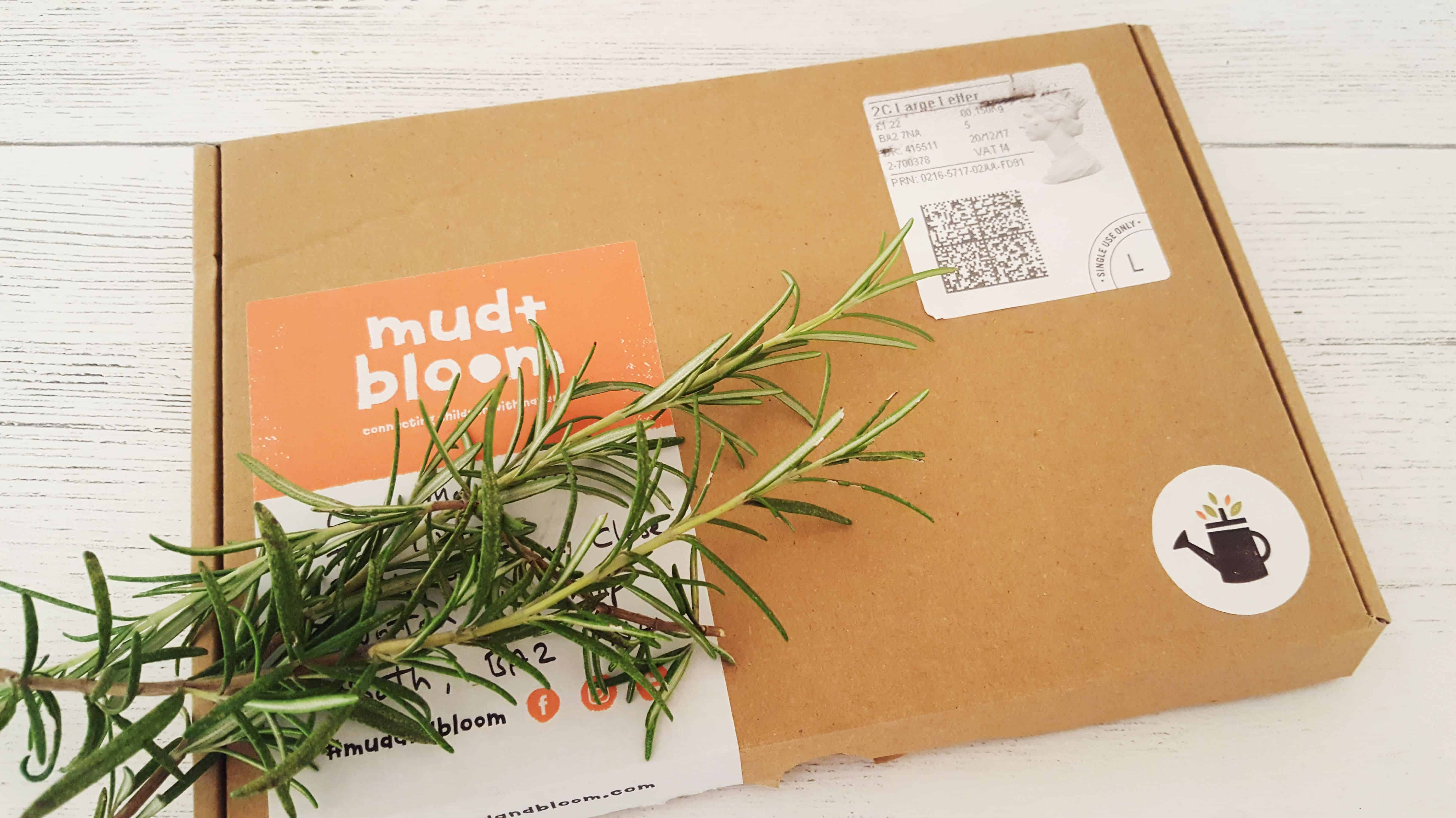 mud-and-bloom-january-review_www.lissnotebook.com