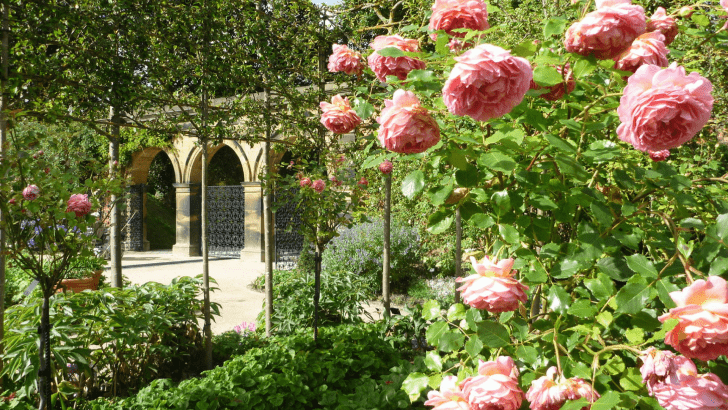 Finding inspiration from some of Britain's most beautiful gardens