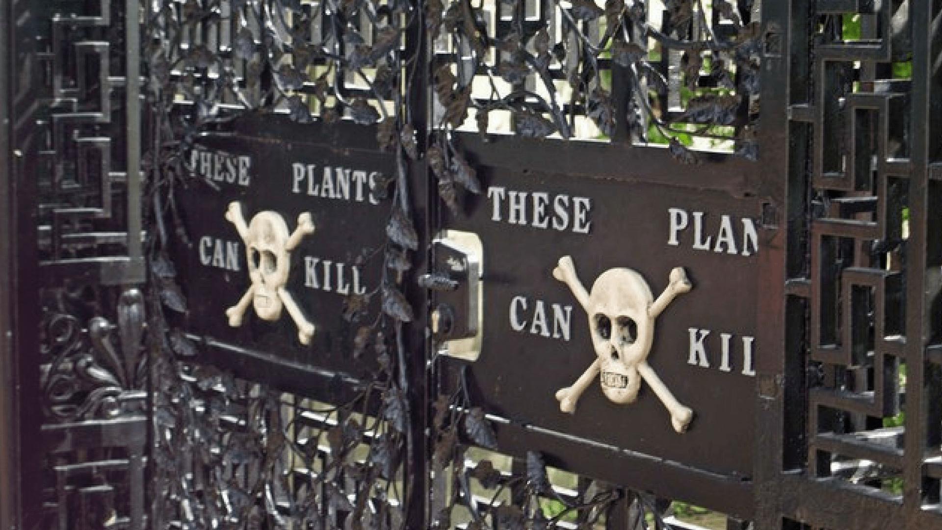 Alnwick Castle - Poison Garden Gate