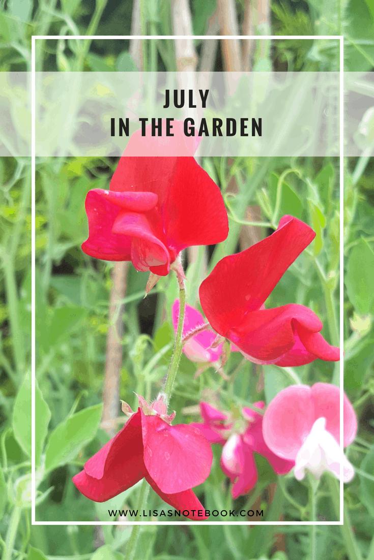 July-in-the-garden_www.lisasnotebook.com
