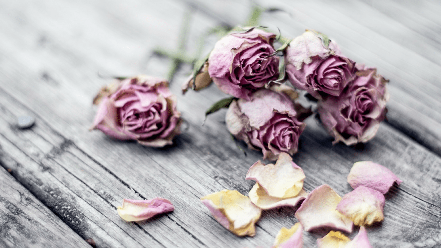 Five things you need to do when a loved one dies