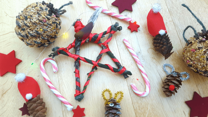 Pinterest Christmas nature crafts – blogger collab with Book Murmuration